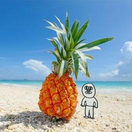 無人島に行きついたら